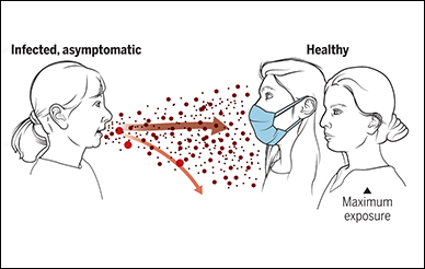Infectious aerosol particles can be released during breathing and speaking by asymptomatic infected individuals.