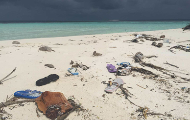 Even a small uninhabited island in the Maldives is marked with human pollution. The flip-flops on this Indian Ocean beach likely came from India or China, more than 1,000 miles away. Photo courtesy of Stephen Mayfield.