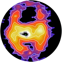 A volume rendering of the ionized gas wind in Makani